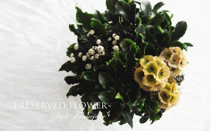 20150722flower-3
